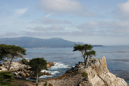Pebble Beach Lone Cypress (Symbol of Pebble Beach Company)