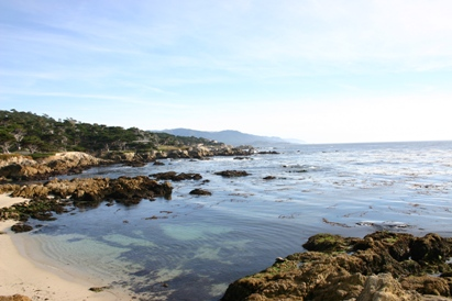 Pacific Ocean Meets Pebble Beach